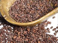 芸術として認められたチョコレート「ヴェイス社」の原料を使用