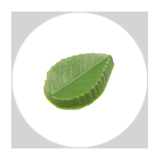 クロンヌリーフ・抹茶